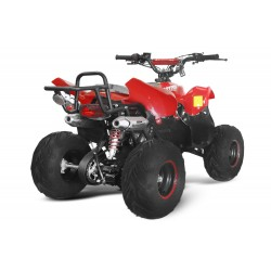Quad 125cc Razzor 6P