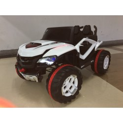 BUGGY D MAX