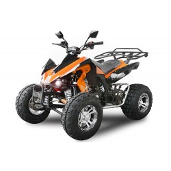 Quad 250cc Speedy Sport Route